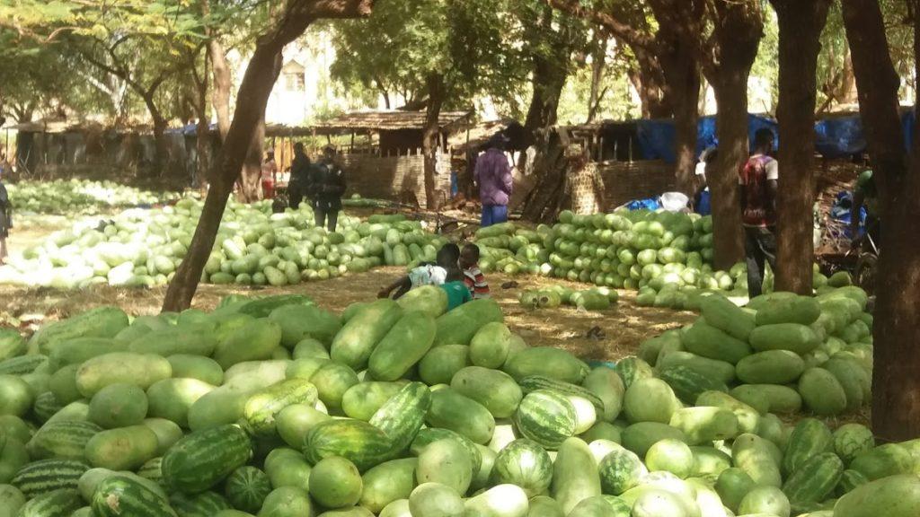 Watermelon market in Kita, southern Mali